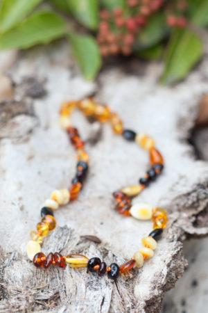 adult amber